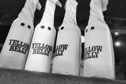 Yellow Belly 11°
